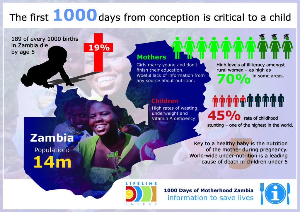 LE Nutrition Infographic
