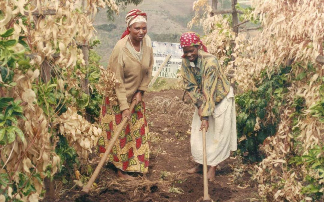 Improving Health Services in Rural Rwanda